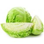 Cabbage (Patta Gobhi)